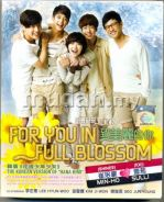 For You In Full Blossom - New Korean Boxset DVD