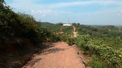 Tanah 50 Ekar Senaling Ulu Senaling Kuala Pilah Negeri Sembilan