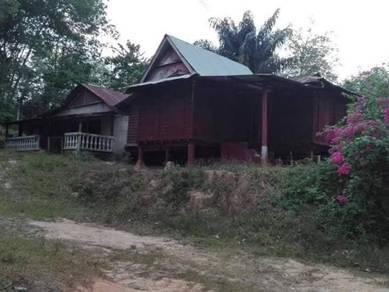Tanah Pertanian | Rumah Kampung Kemuning Alor Gajah Melaka