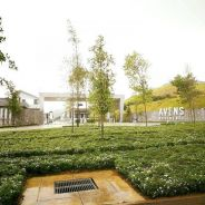 Bangi House For Rent