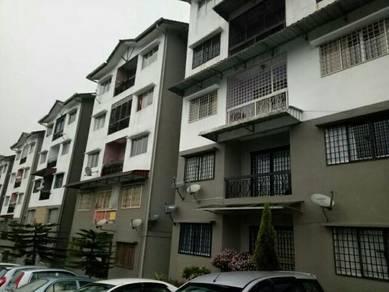 Apartment in taman royal lily tanah rata