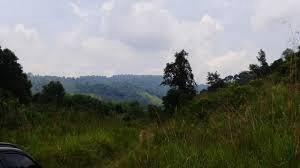 Freehold 2.8 Acres Residential Land Mont Kiara With DO