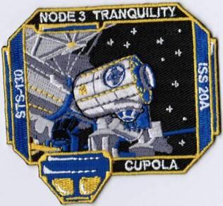 NASA Space Shuttle Flight STS-130 Endeavour Patch