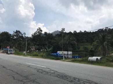 31acre, D24, Musang King, bentong to raub road, pahang, durian land