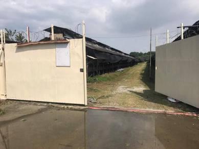 Kampung jawa poultry farm for rent