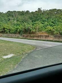 Tanah bukit rendah untuk disewakan