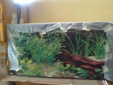 Aquarium Tank Two and Half Feet