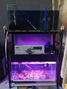 Aquarium 2 feet x 2pcs full set for sale