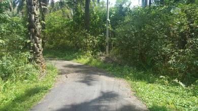 Jelebu 4ac Next Houses Rubber with Durian trees Farm 0171