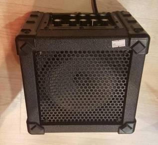Amplifier / speaker