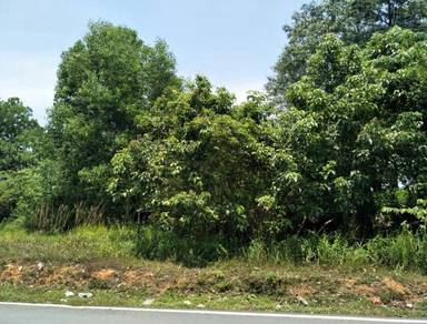 Puncak Alam/Ijok 5ac Freehold Industrial Land Sale/$68 psf