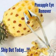 Pineapple Eye Remover (21)