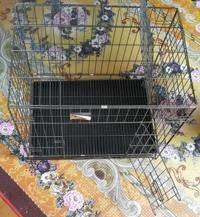 Sangkar kucing baru ( 2 pintu ) - cat tahan karat