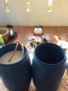 Safe Pest Control anai-anai,semut,lipas,tikus