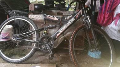 Basikal besar