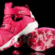 Nike Lebron Soldier 9 Basketball shoe- Love Life