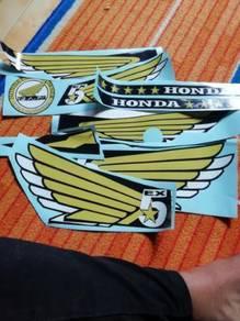 Stipe wings ex5