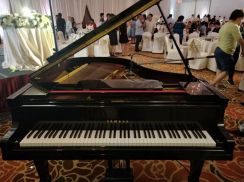 Rental Musical Instruments for Home or Function