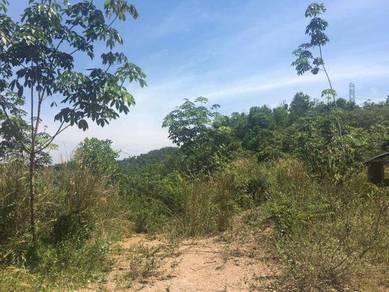 50 ekar tanah kebun Kuala Pilah [freehold]