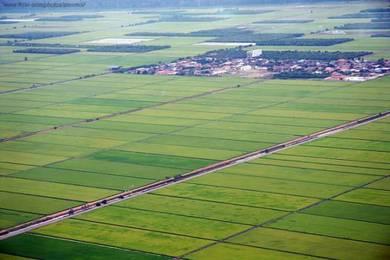 Sekinchan Padi Land, Freehold, Hot Tourism Area, Planted Crops [Nice]