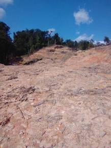 Tanah sesuai untuk projek perumahan di kg kuantan batang kali