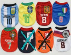 World cup jerseys for pets