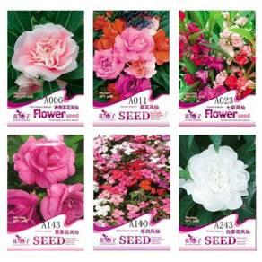 1 Pack garden balsam flower Seeds
