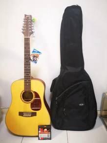 Ashton dm25 12nt 12 string acoustic guitar