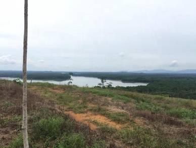 Kampung Sembing Sungai Pancor Kota Tinggi