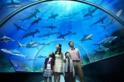 SEA AQUARIUM Trip To Singapore - Great Deal Ticket