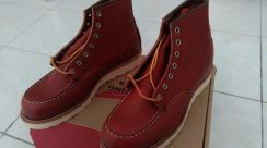 Red wing Oro Russet 8131