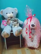 Teddy bear plush 3in1 cheap