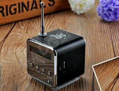 Mini Speaker Radio FM USB PC Smartphone SD TF Card