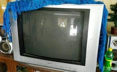 Television 29