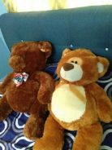 Preloved bear
