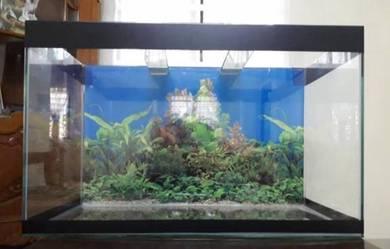 Aquarium new 2ft