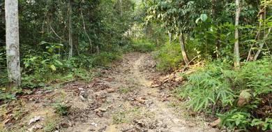 36 ekar tanah pertanian di Kuala Kangsar