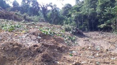 Tanah di Kampung Ulu Rembang Panas