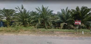 Agriculture land in telok kemang, port dickson