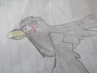 Bird arts