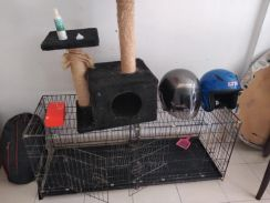 Cat house and playhouse and 2 helmets
