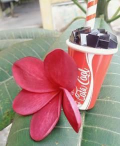 Lipstin coca cola