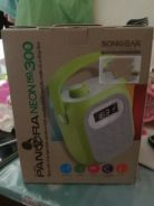 Pandora neon speaker