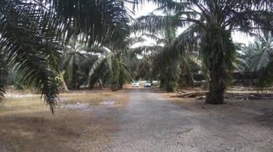 First Grade Land For Sale Near Sungai Duri, PDC, Sungai Jawi