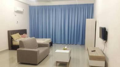 Palazio Studio Apartments Austin Height Rent