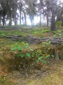 Tanah 5.99 ekar di Rembau Negeri Sembilan
