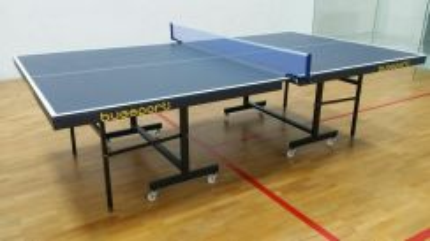 Table tennis/meja ping pong PJ area