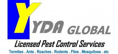 Pest Control Tikus Lipas Semut Anai - anai Kedah