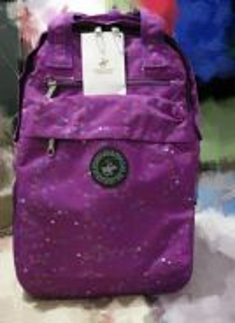 Purple detachable trolley backpack