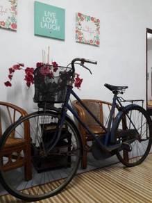 Basikal robinsons